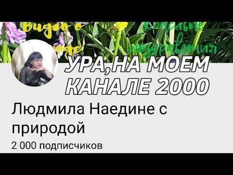 💥💥💥Ура,на моем канале 2000!!!💥💥💥