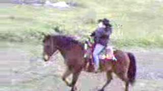 preview picture of video 'carolina a cavallo.3gp'