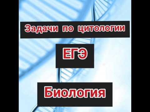Задачи по молекулярной биологии в ЕГЭ. Определение процентного содержания нуклеотидов в молекуле ДНК