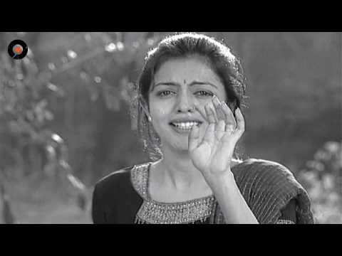 Episode 310   Chakravakam Telugu Daily Serial