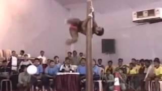 Смотреть онлайн Самый странный вид спорта в мире