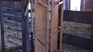 Simple Headgate and Chute Set-Up for Hobby Farm