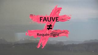 Fauve - Requin-Tigre (Paroles)