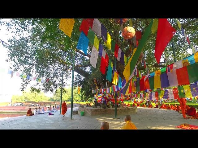 ố 7 Thuyết Pháp Tại Vườn Lâm Tỳ Ny Hành Trình Theo Dấu Chân Phật Chùa Khai Nguyên