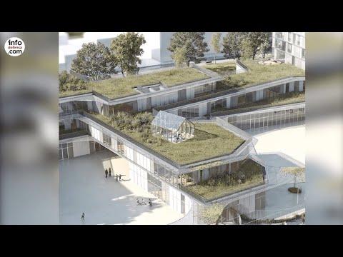 Escribano invertirá 20 millones para transformar El Viso en un parque de investigación y ensayos