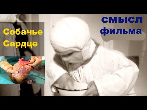 Собачье сердце от запрещенного в СССР до включенного в школьную программу (видео)