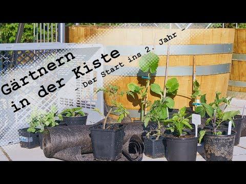 Gärtnern in der Kiste - Der Start ins zweite Jahr