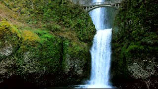 Multnomah Falls and Crown Point Excursion | The American Empress