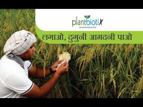फसल और आमदनी दुगनी कर देगा ये उत्पाद | Plant Biotix