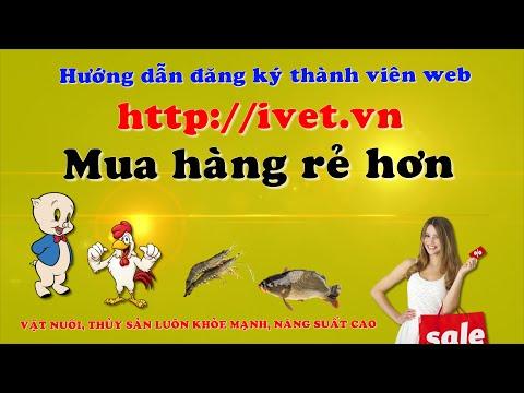 Hướng dẫn đăng ký thành viên ivet.vn để mua hàng rẻ hơn