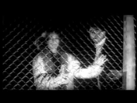 저주받은 아이들 (These Are the Damned. 1963) Trailer