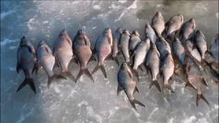 Рыбалка в мокшино как туда подъехать