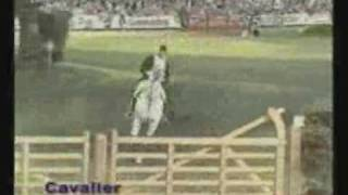 video of Cavalier