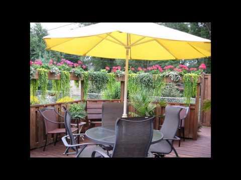 Ideas de privacidad del jardín