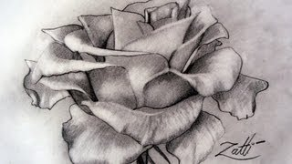 Desenhando rosas para pinturas sem dificuldade