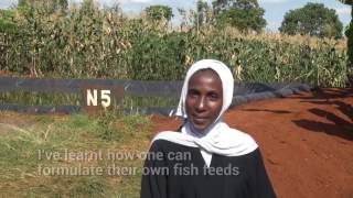 Small Scale Fish Farmers' Post-Training Interviews