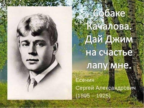 Песня моря счастья и улыбки это северный кавказ