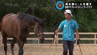 2019年10月19日放送分 滋賀経済NOW