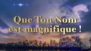 QUE TON NOM EST MAGNIFIQUE ! Psaume 8