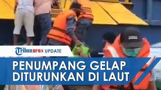 VIDEO Detik-detik 20 Orang Penumpang Gelap Diturunkan di Tengah Laut saat Perjalanan dari Balikpapan