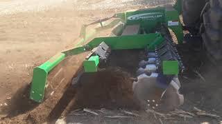 Speedtiller K-LINE - Déchaumage sur maïs