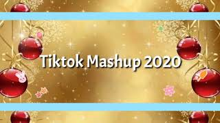 Tiktok Mashup December 2020 (clean)