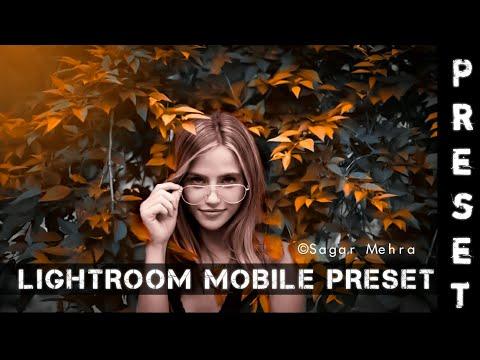 Danish Zehen presets-presets free download|lightroom mobile preset