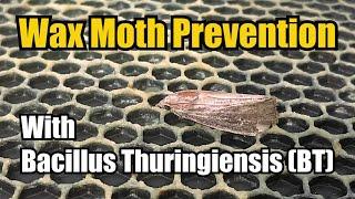 Honeycomb / Wax moth treatment