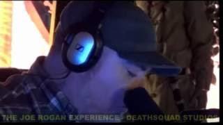 Everlast - Anyone on the Joe Rogan Experience