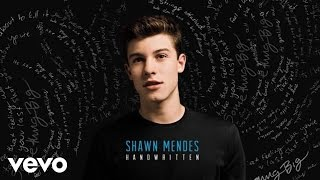 Shawn Mendes - Imagination (Audio)