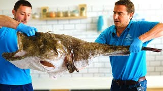 18KG Monkfish | Fillet Guide | Fish for Thought TV