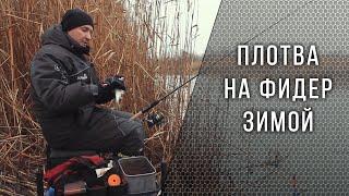 Ловля плотвы в январе по открытой воде
