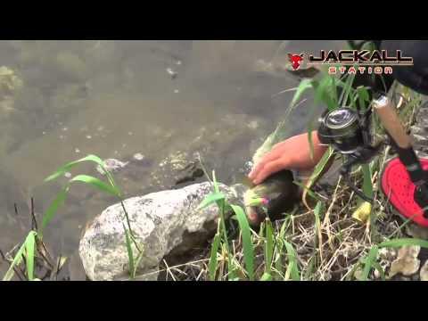 J2 MAX case of 早野/西川ペア Vol.2