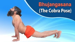 How to do Bhujangasana {The Cobra Pose} | Swami Ramdev