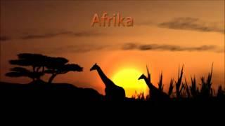 Scatterlings Of Africa johnny clegg