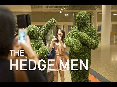 The Hedge Men - Living Trees Video
