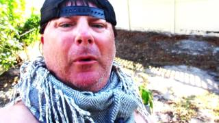 Donnie Baker's Conspiracy Theory about the Women's March and Vaginal Kung Fu