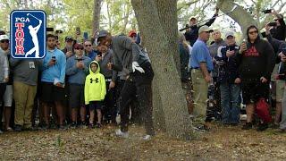 Tiger Woods' brilliant par save from the trees at Valspar - dooclip.me