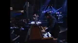 Wallflowers & Bruce Springsteen   One Headlight