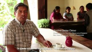 Café y Caffè in Guatemala