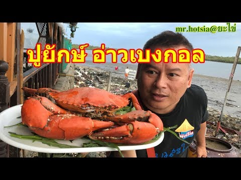 mr.hotsia@ยะไข่ 2/20 : ปูยักษ์ กุ้งมังกรใหญ่ อ่าวเบงกอล Chaung Thar Berach Myanmar
