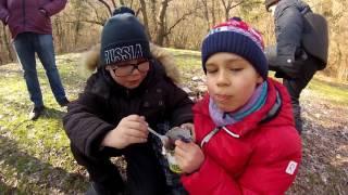 Поход с детьми, робототехника в Севастополе, как провести выходные в Крыму?