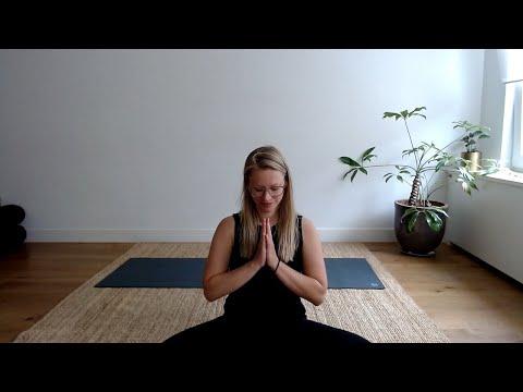 Prenatal Yoga with Anne Hermans