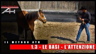 IL METODO ATH - LE BASI - L'ATTENZIONE