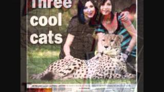 3 Cool Cats ~ Silver Beatles  LP ~ joey.wmv
