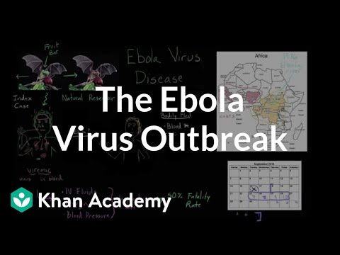 Understanding the Ebola virus outbreak (video) | Khan Academy