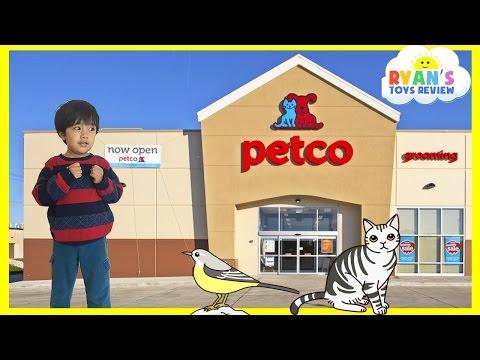 Family Fun Trip to PetCo Animals for Kids