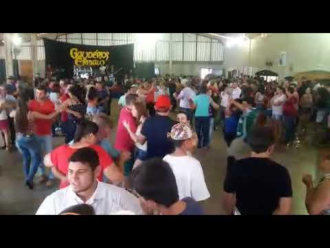 Festa do Búfalo em Ampere