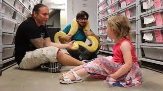 Little Girl Loves My Burmese Python Sunshine!! Brian Barczyk