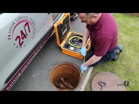Pest Control for Rat and Mice infestations - MJ Backhouse